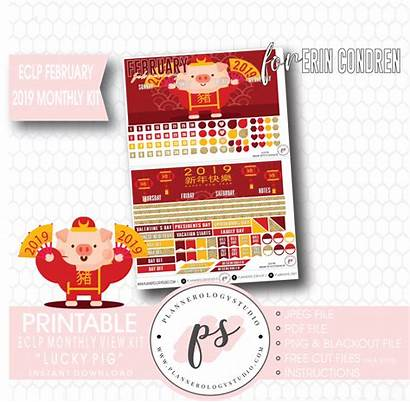 Pig Lucky Monthly Kit