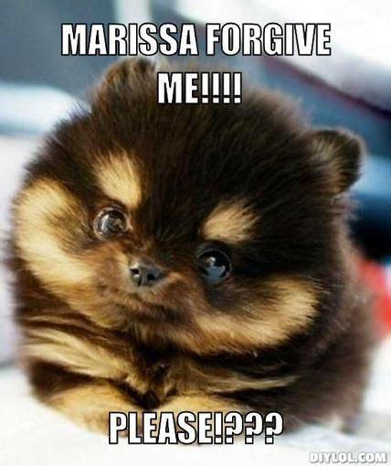 Cutest Memes - 22 best cutest memes ever images on pinterest ha ha funny animals and funny stuff