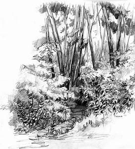 forest sketch by fenna-maruda on DeviantArt