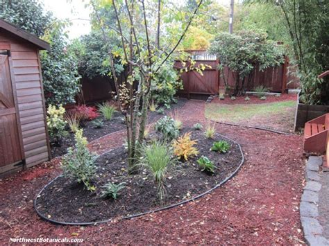 Pet Friendly Gardening And Landscape In Seattle Bothell