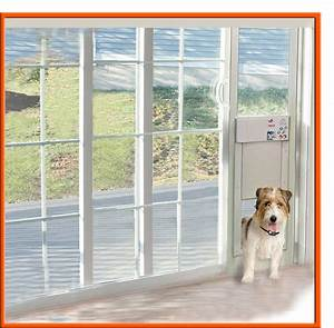 awesome dog doors for sliding glass door power pet With automatic dog door for sliding door