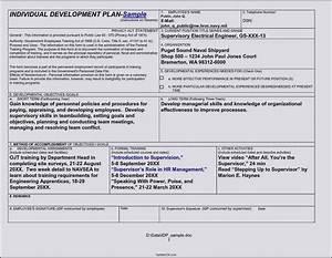 career development plan template doc template update234 With research and development plan template