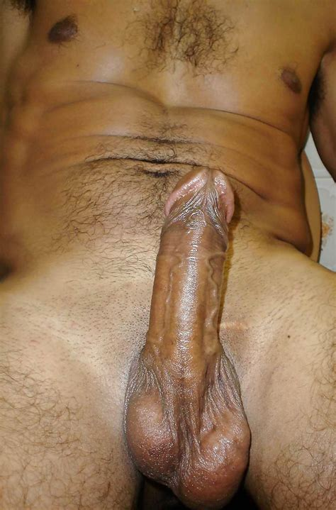 Dick Pics Of A Horny Bull S Thick Cock Indian Gay Site