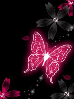 Animated Butterfly Wallpaper Gif - animated butterfly gif loj3007 954 gif 480 480 0 64000 0