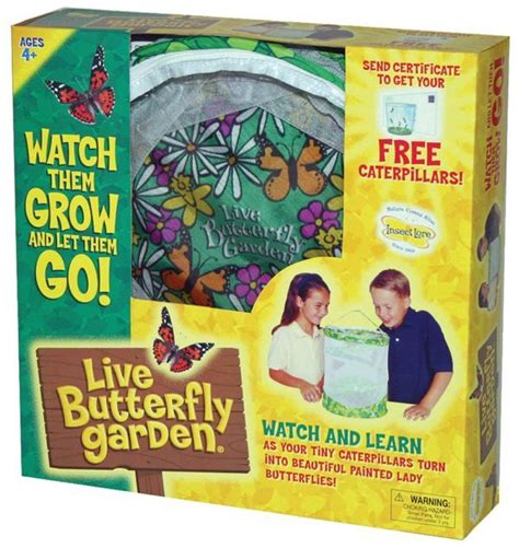 live butterfly garden 26 best images about live butterfly garden on
