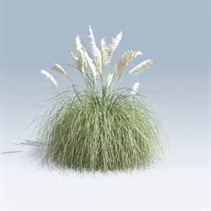 flowers store pas grass v6 speedtree