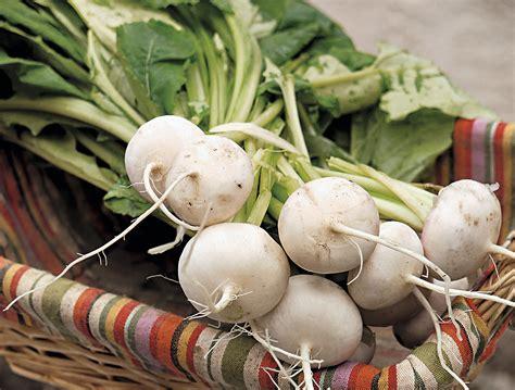 légumes à cuisiner légumes apprenez à cuisiner les fanes détente jardin