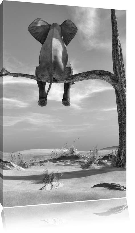 sitzender elefant auf einem ast  der wueste kunst bw