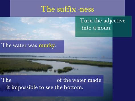 noun forming suffixes ment and ness