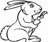 Rabbit Coloring Pages Printable sketch template