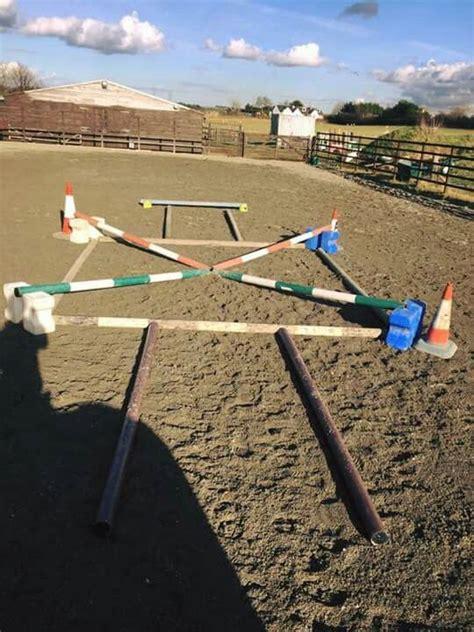 muskelaufbau  training pferd pferde pferde
