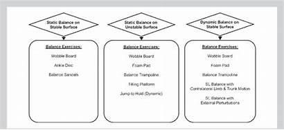 Balance Types Exercise Basic Ability Improving Guideline