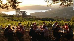 Best Napa Valley Wineries, Tours and Maps