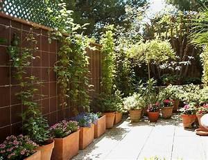 Rankhilfe Clematis Selber Bauen : rankhilfen kletterpflanzen und rankhilfen aus holz oder ~ Lizthompson.info Haus und Dekorationen