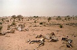 Geography- The Sahel is a region North of the Sahra Desert ...