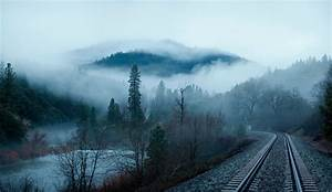 Forest trees river water mountains morning fog railroad ...