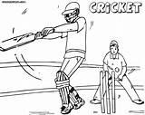 Cricket Coloring Cricket1 sketch template