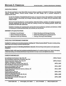 Life insurance resume example executive resume resume for Life insurance resume format