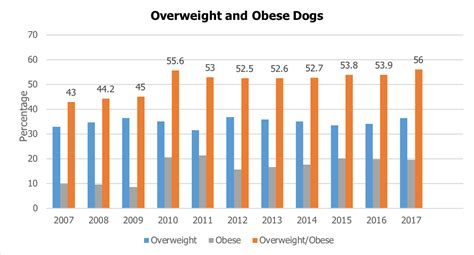 pet obesity    rise manage  pets weight