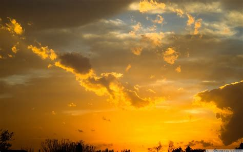 gold sunset sky wallpaper  wallpaperscom