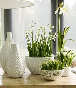 Rest Im Glas : gestalten sie wundersch ne fr hlingsdeko mit fr hlingsblumen freshouse ~ Orissabook.com Haus und Dekorationen