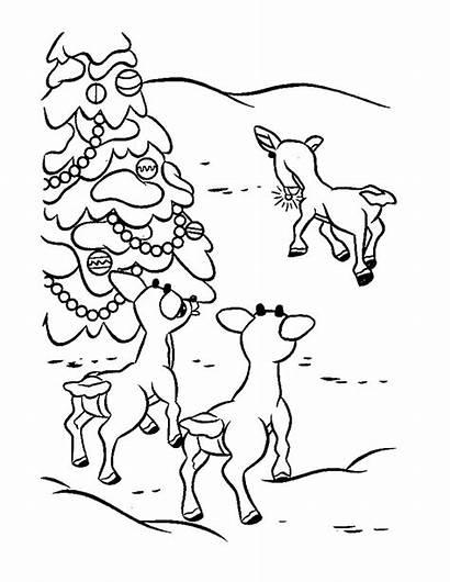 Reindeer Coloring Rudolph Printable Rudolf Santa Colorir
