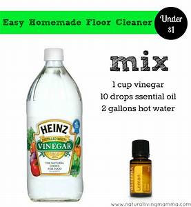 Spring cleaning 12 homemade all natural cleaners for Home made floor cleaner