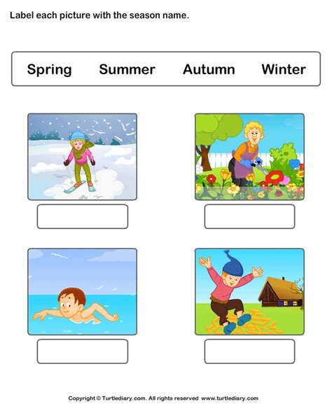 write seasons depicted  pictures worksheet turtle diary