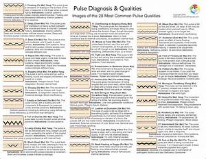 Pulse Diagnosis Acupuncture Chart