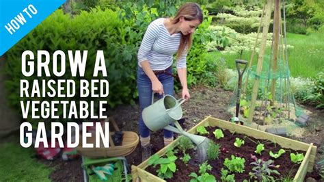 How To Grow Vegetables In Raised Bed Gardens Youtube