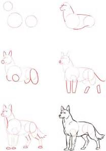 How to Draw Easy Wolf Drawings Step By