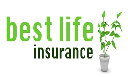 There are several reputable online insurance quote websites that you can consider, including: Best Life Insurance Quotes   Life insurance quotes, Term life insurance quotes, Affordable life ...