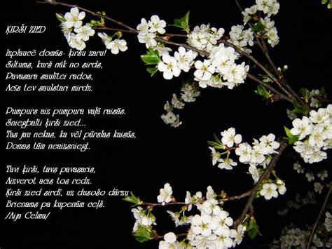 Aijassmaids - dzeja katrai gaumei...: ĶIRŠI ZIED