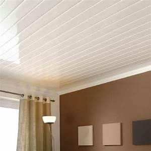 Faux Plafond Pvc : plafond pvc ~ Melissatoandfro.com Idées de Décoration