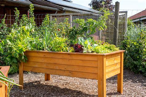 Bepflanzen Eines Hochbeetes by Hochbeet Gartengestaltung Mal Anders Ernte Auf Augenh 246 He