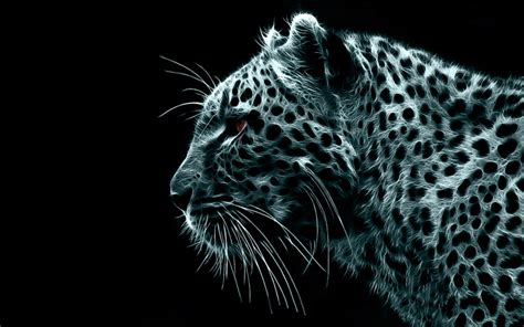 Spirit Animal Wallpaper - spirit 1440x900 wallpaper animals cats hd desktop wallpaper