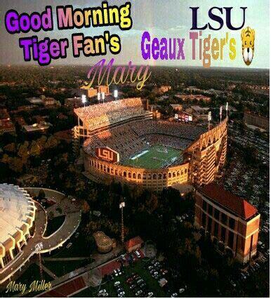 Pin by Josie Robinson on LSU | Lsu tiger stadium, Lsu, Lsu ...