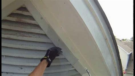 one way bat door bat removal using one way door nc