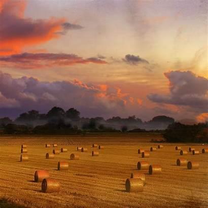 Harvest Ipad Iphone Wallpapers Uri Ipod Retina