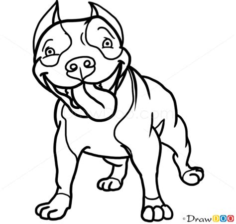 draw cute pit bull dogs  puppies
