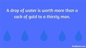 Best Save Water Slogans and Quotes