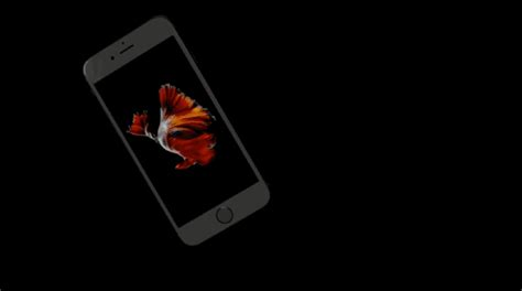 gifs for iphone iphone 6s apple event 2015 gif find on giphy