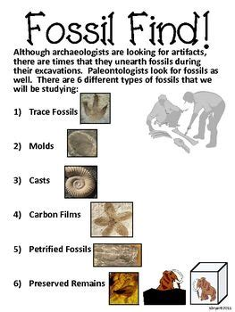 types of and fossil on