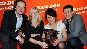 Movie's star Koko is the top dog