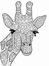 Giraffe Coloring Pages Giraffes Cute Adult Adults Head Justcolor Printable Patterns Children Mandala Animal Animals Christmas Books sketch template