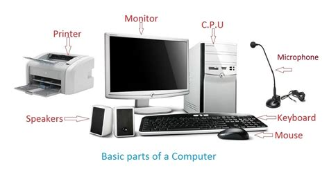 Computer Parts  Ms Rozier's Tech Page. Peninsula Dog And Cat Clinic. Simpson Eye Associates Kelly Payroll Services. United Healthcare Behavioral Health Providers. Charleston Carpet Cleaning Azura Memory Care. Kitchen Stainless Steel Shelving. Nursing Colleges In New York. Board Of Equalization Account Number. Upload File To Sharepoint Agoda Sydney Hotels