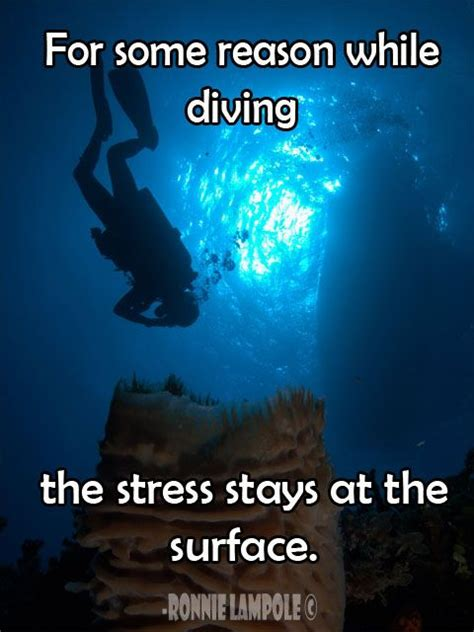 Best 25+ Scuba Diving Quotes Ideas On Pinterest  Diving. Quotes About Moving Closer. Quotes About Change Journey. Women's Rights Quotes Inspirational. Country Quotes To Put On Shirts. Christian Quotes Tattoos. Heartbreak Sister Quotes. Cute Us Quotes. Success Quotes For Teachers