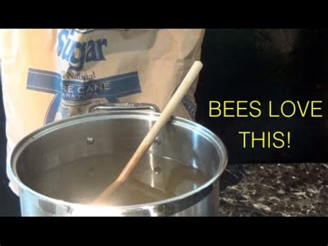 beekeeping sugar water syrup feed for bees secret