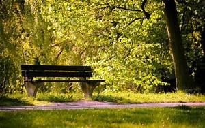 壁紙、公園、ベンチ、夏のHD:ワイドスクリーン:高精細:フルスクリーン