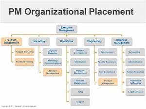 Where does product management belong? | Roadmap.com